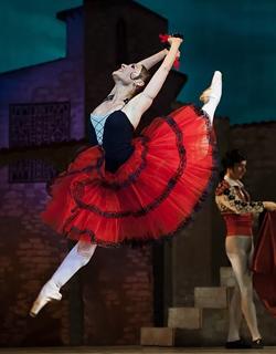 Opera or Ballet Trip