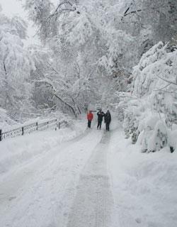 Uzbekistan In Winter